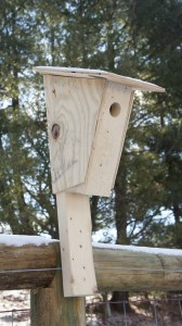 Peterson Blue Bird Nest Box